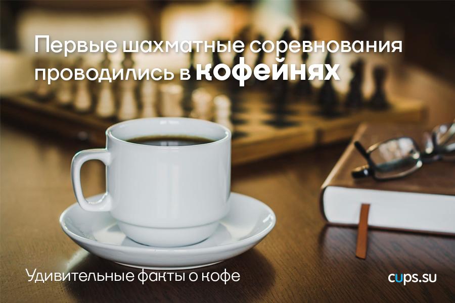 Первые шахматные соревнования