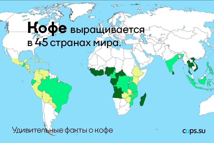 Кофе выращивается в 45 странах мира