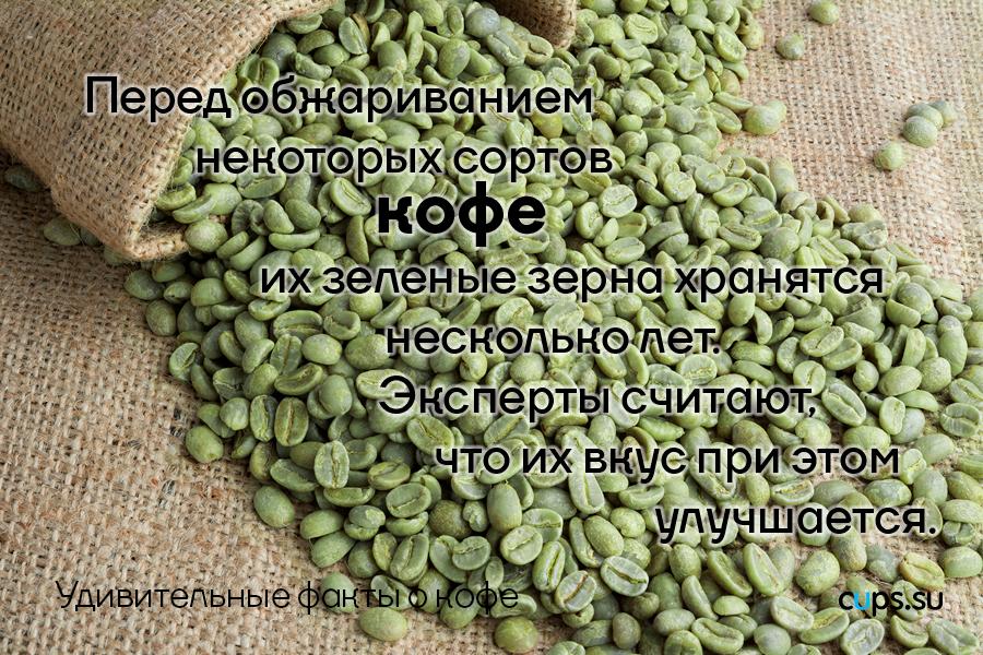 зеленые зерна кофе хранятся несколько лет